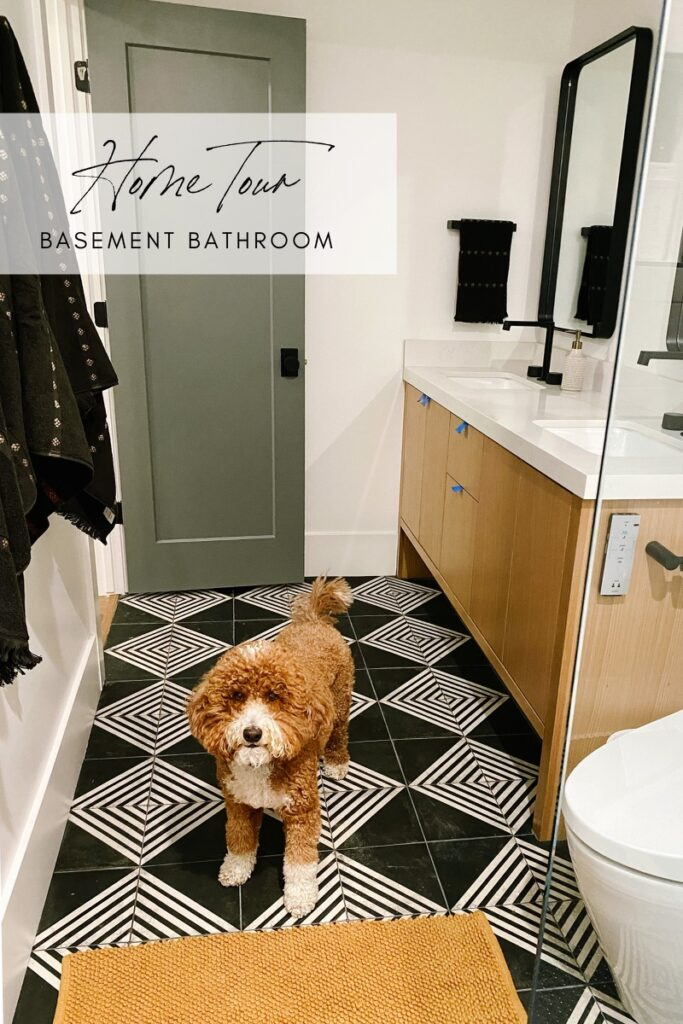 Home Tour: Basement Bathroom